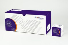 GenoFlow HPV array test kit